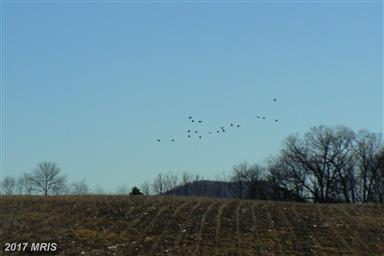 0 Fort Loudon Road Photo #16