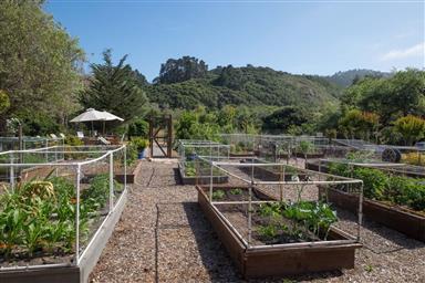 131 Hacienda Carmel Photo #33