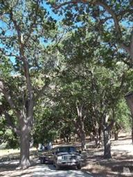 15967 BLACKBURN CANYON RD Photo #80