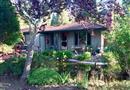 204 E Hilton Drive, Boulder Creek, CA 95006