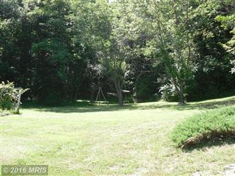 20402 Tuscarora Creek Road Photo #30
