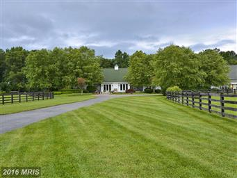 516 Goose Landing Farm Lane Photo #24