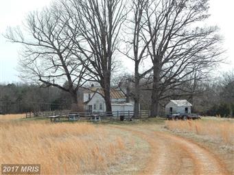 21465 Countryside Lane Photo #5