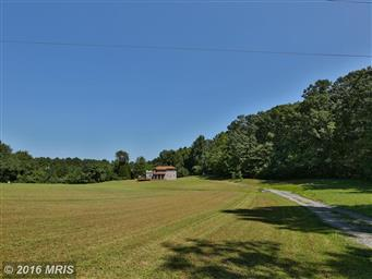 12111 Obannons Mill Road Photo #26