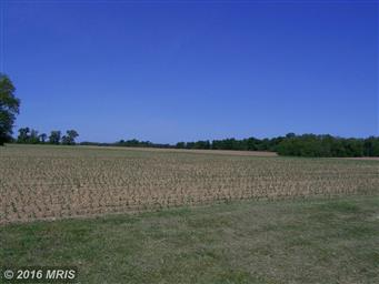 11878 Browntown Road Photo #7
