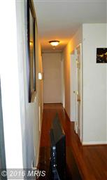 1166 Meander Drive Photo #12