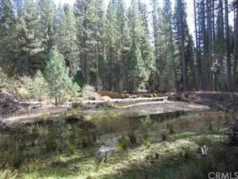 40 AC Chiquito Creek Photo #29