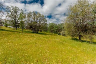 3979 Oak Grove Road Photo #49