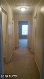 10767 Collinswood Drive Photo #19