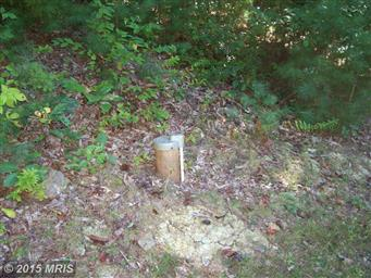 1136 Grizzly Rd Photo #8