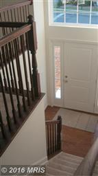 501 Hollengreen Drive Photo #19