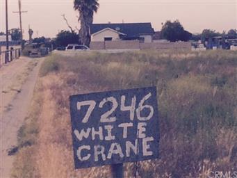 7246 White Crane Road Photo #21
