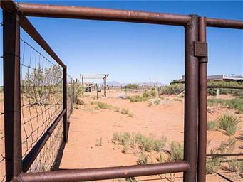 5434 Desert Willow Drive Photo #19