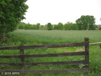 1769 Quicksburg Road #1771 Photo #4