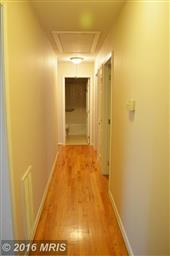 1155 Meander Drive Photo #17