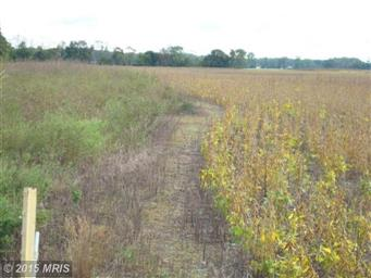 0 Lot2 Parcel Second Brisco Farm Lane #CM9523277 Photo #4