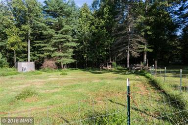 1045 Grizzly Road Photo #16