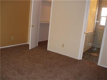 5825 Clydesdale Drive Photo #20