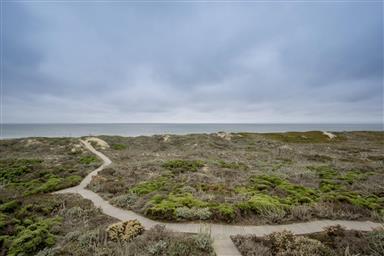 106 Monterey Dunes Way Photo #29