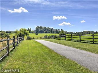 12504 Marsh Run Lane Photo #22