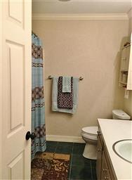 1005 Clearspring Drive Photo #15