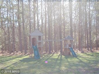 24795 Pinetown Road Photo #5
