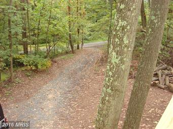 715 Maverick Trail Photo #4