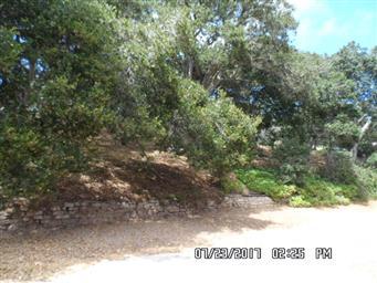 9440 Valley Oak Way Photo #20