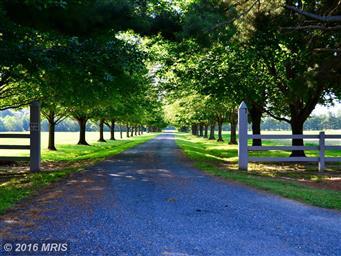 5268 Quaker Neck Road Photo #15