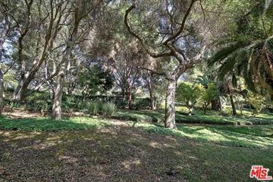 4395 Via Esperanza Photo #46