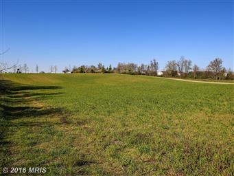 13735 Eagles Nest Farm Lane Photo #30