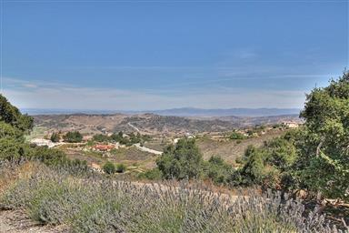 25663 Montebella Drive Photo #53