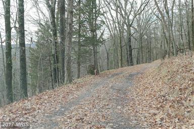 4388 Supinlick Ridge Road Photo #19