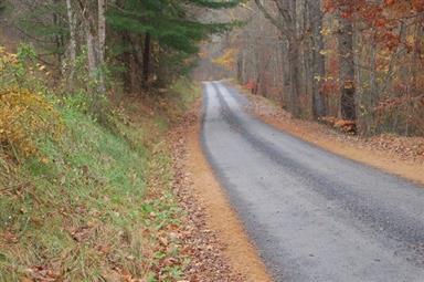 1781 Weaver Road Photo #11