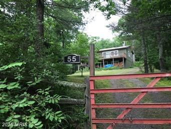 55 Hunter Lane Photo #27
