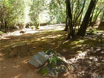 5969 Pine View Drive Photo #51