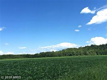 0 S Blue Ridge Turnpike #MA9616131 Photo #5