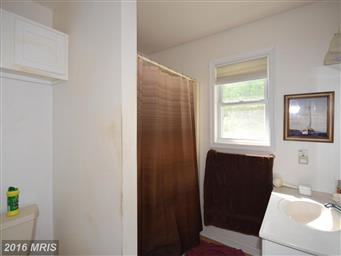 297 Walden Circle Photo #16