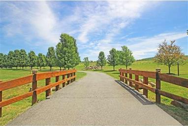 55 Hidden Meadow Drive Photo #24