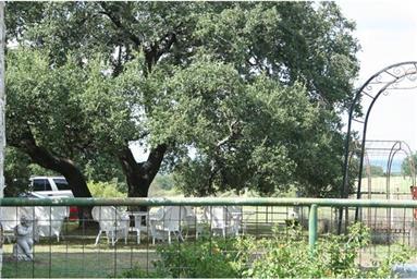337 Klett Ranch Road Photo #3