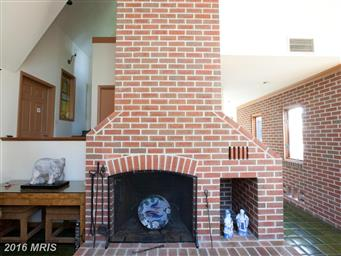 8239 Tricefield Road Photo #11