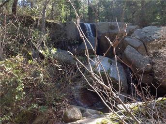 145 Shadow Creek Rd Photo #25