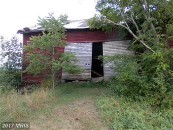 4128 Alum Springs Road Photo #15