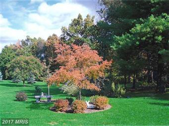 6229 Greenbriar Terrace Photo #26