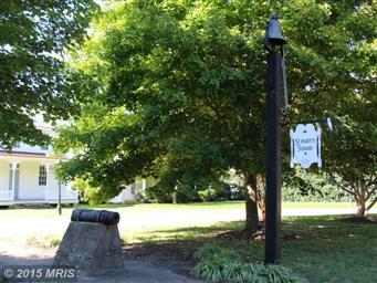980 Ruscello Vista Ct Photo #37
