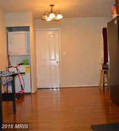 1166 Meander Drive Photo #6