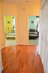 203 Saint Louis Avenue #1 Photo #13
