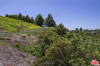 480 Glen Annie Road Photo #3