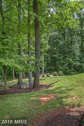 17107 Reid Hill Drive Photo #25
