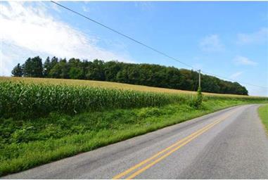 5928 Mantz Road Photo #4